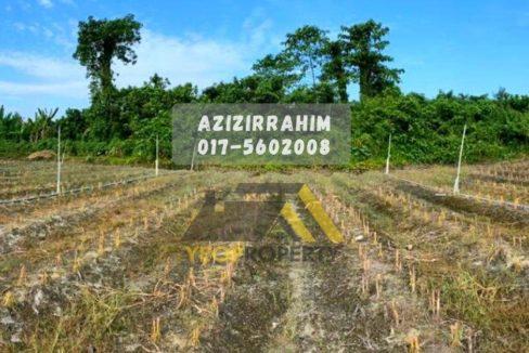 Agricultural Land Tanjung Tualang Perak