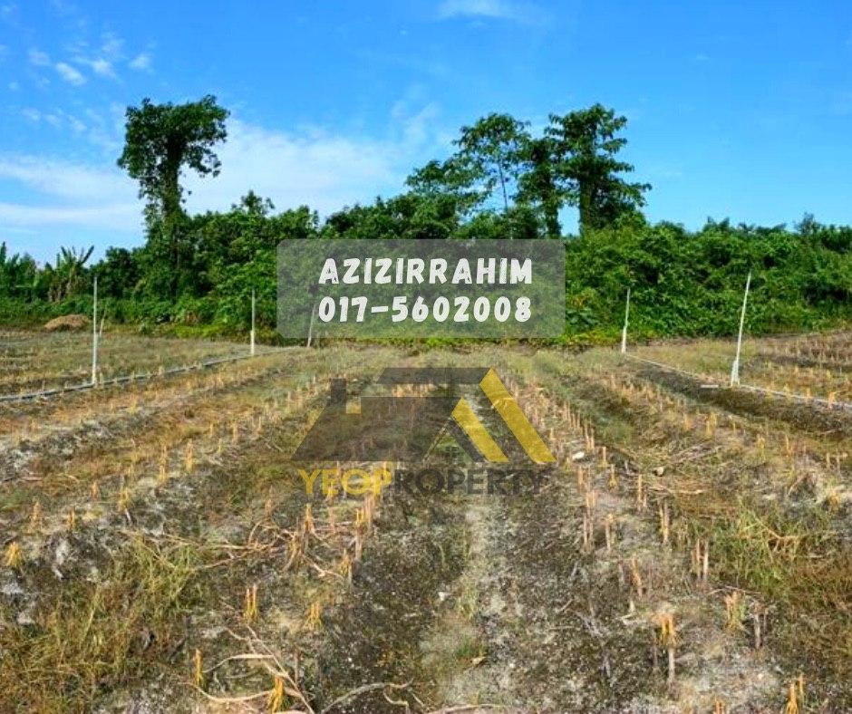 8.4 Ekar Tanah Pertanian Tanjung Tualang Perak